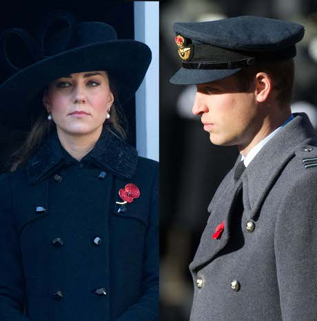 Kate Middleton Demands a Baby and Husband - Forces Prince William to Quit RAF