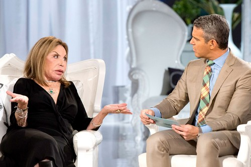 The Real Housewives of Miami Season 2 Episode 17 Recap 01/03/12