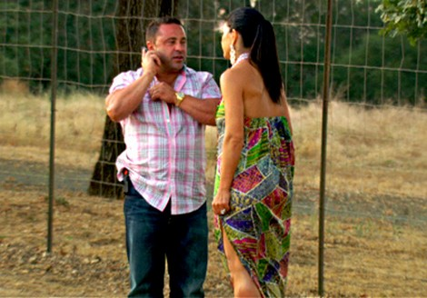 The Real Housewives of New Jersey Season 4 Episode 16 Recap 8/19/12