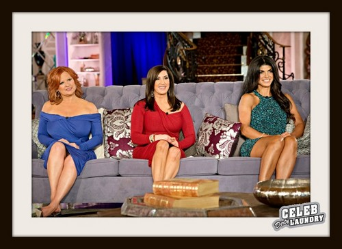"""The Real Housewives of New Jersey RECAP10/6/13: Season 5 Episode 19 """"Reunion Part 1"""""""