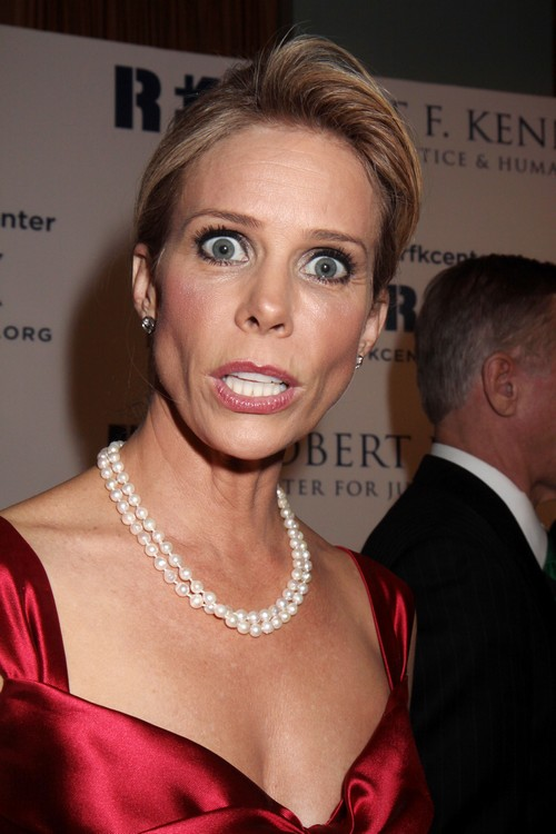 Robert F. Kennedy Jr.'s Engagement To Cheryl Hines Starts Family Feud (PHOTOS)