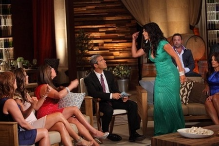 Teresa Guidice Horrified By Joe Giudice's Cheating On The Real Housewives of New Jersey Season 4 'Reunion Part 2'
