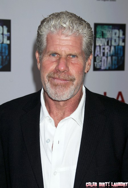 Nazi Supporter Jesse James Gets Fired: Ron Perlman Stands Up For Sons of Anarchy!