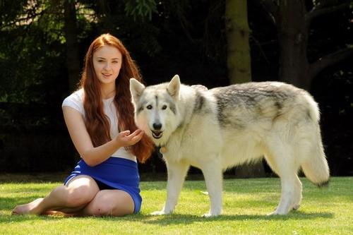 Game of Thrones Season 7 Spoiler: Sophie Turner Accidentally Reveals Sansa Stark's Fate
