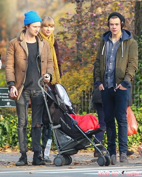 Taylor Swift Wants Pregnancy and a Baby NOW With Harry Styles - He Says NO!