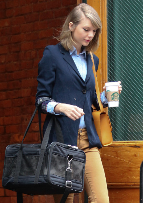 Taylor Swift Stops Dating, Adopts Cat Lady Lifestyle At 24 Years Of Age - She Loves Her Feline Companion! (PHOTO)