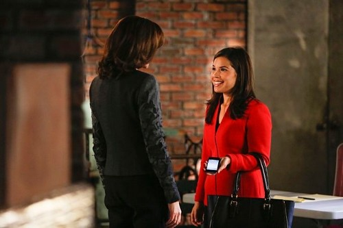 "The Good Wife Season 5 Episode 8 ""ICE, ICE, Baby"" Video, Photos & Spoilers"