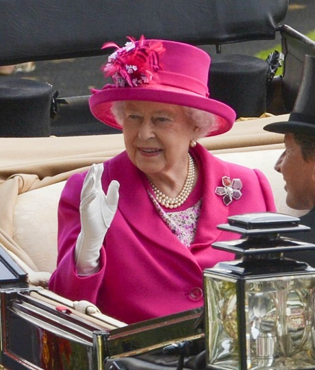 Queen Elizabeth's Horse Fails Drug Test - Doped With Morphine - She Involved In This Royal Equine Scandal?