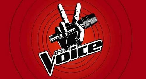 """The Voice RECAP 4/8/13: Season 4 """"Blind Auditions Part 5"""""""