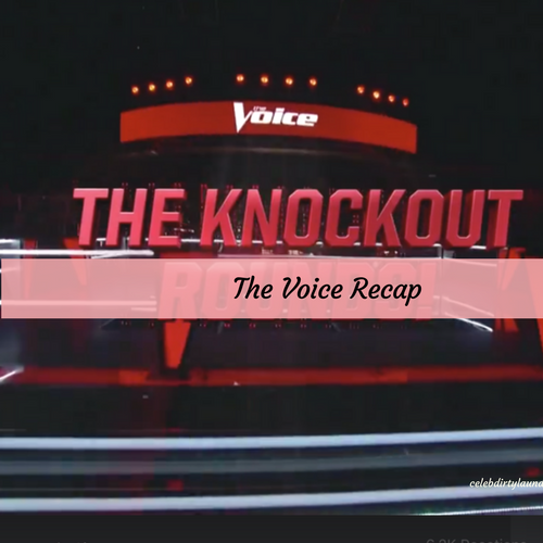 'The Voice' poll: Was the right artist stolen on Tuesday's knockout round?
