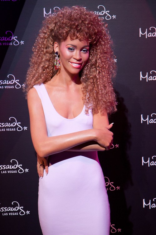 Whitney Houston Naked Corpse Police Comments Lead To Cop Lawsuit
