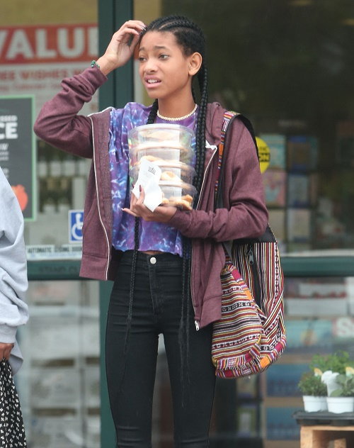 Willow Smith Topless Photo Instagram Scandal: Jada Pinkett-Smith's Daughter Crosses Line Showing Breasts and Nipples?