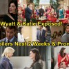 https://www.celebdirtylaundry.com/2017/the-bold-and-the-beautiful-spoilers-next-2-weeks-steffy-panics-katie-and-wyatts-romance-exposed-brooke-kicks-thorne-out/