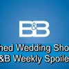 https://www.celebdirtylaundry.com/2018/the-bold-and-the-beautiful-spoilers-week-of-september-24-rushed-wedding-shocker-hope-and-steffy-agree/