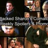 https://www.celebdirtylaundry.com/2018/the-young-and-the-restless-spoilers-week-of-feb-19-sharon-attacked-lands-in-a-coma-desperate-chelsea-kidnaps-christian/