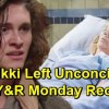 https://www.celebdirtylaundry.com/2018/the-young-and-the-restless-spoilers-monday-december-17-recap-nikkis-unconscious-after-hit-and-run-jabot-party-drama/