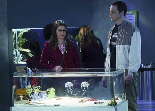 The Big Bang Theory Bombshell – Amy And Sheldon Finally Have Sex, Love Scene Five Years In The Making