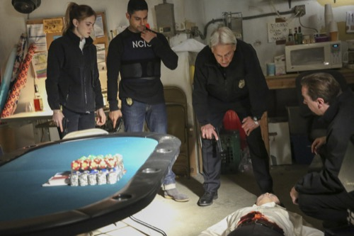"NCIS Recap 03/12/19: Season 16 Episode 16 ""Bears and Cubs"""