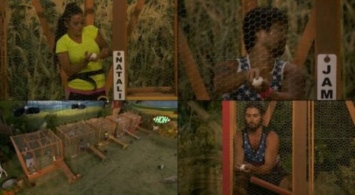 Who Won 'Big Brother 18' Week 11 HoH Spoilers: Victor Wins Chicken Wire Head of Household Comp – James Should Start Worrying!