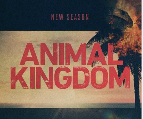"""Animal Kingdom Premiere Recap 07/11/21: Season 5 Episode 1 """"Red Handed"""""""