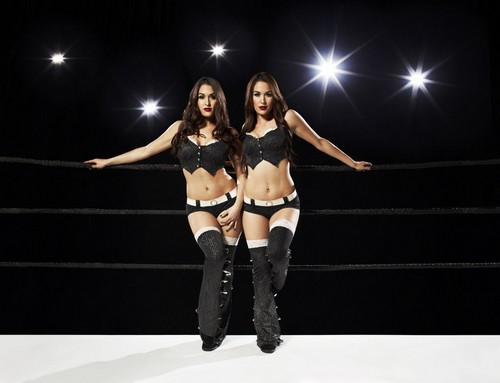 Total Divas: How the WWE Can Salvage Nikki and Brie, The Bella Twins Disaster