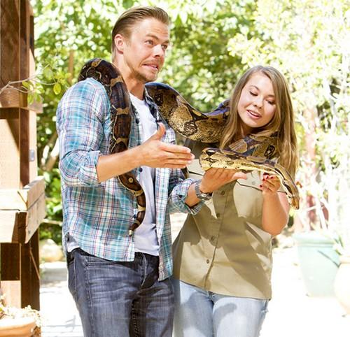 Bindi Irwin Break-Up: Boyfriend Chandler Powell Jealous of Derek Hough - DWTS Success Leads to Split?