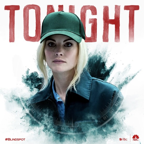 "Blindspot Recap 06/25/20: Season 5 Episode 7 ""AWL In"""