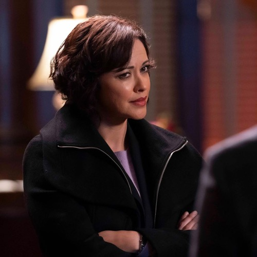 "Blue Bloods Fall Finale Recap 12/06/19: Season 10 Episode 10 ""Bones To Pick"""