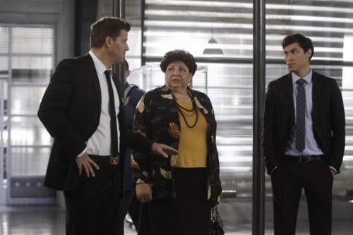 "Bones Season 8 Episode 12 ""The Corpse on the Canopy"" Recap 01/21/13"