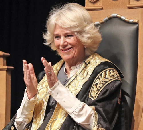 Camilla Parker-Bowles Unusual, Yet Crucial Royal Duty To Future King Charles
