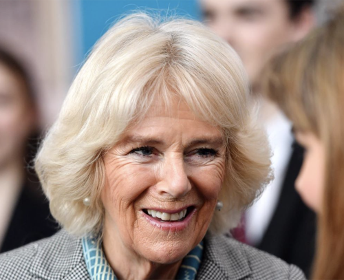 Who Plays Camilla Parker-Bowles in Diana: A True Musical Story?