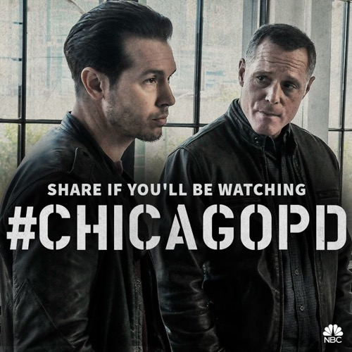 "Chicago PD Recap 11/11/15: Season 3 Episode 8 ""Forget My Name"""