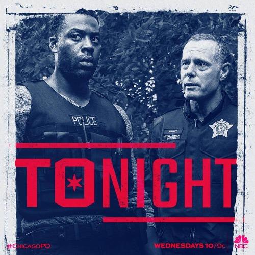 """Chicago PD Recap 10/18/17: Season 5 Episode 4 """"Snitch"""""""