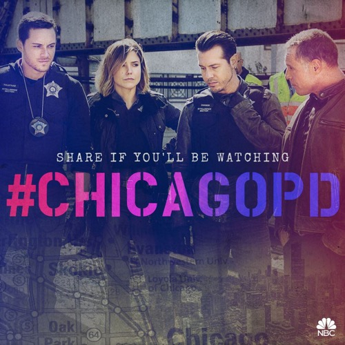 "Chicago PD Recap 11/4/15: Season 3 Episode 7 ""A Dead Kid, A Notebook, and a Lot of Maybes"""