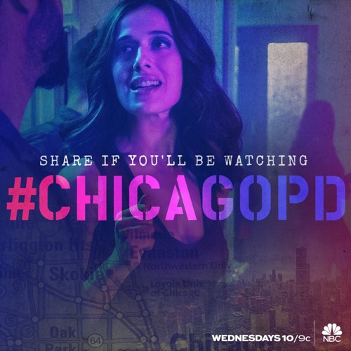 """Chicago PD Recap 1/13/16: Season 3 Episode 11 """"Knocked the Family Right Out"""""""
