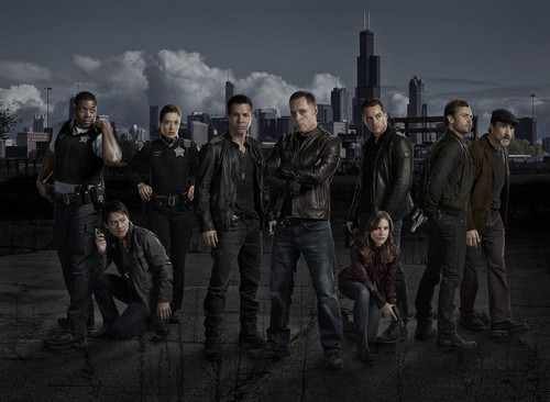 "Chicago PD RECAP 1/22/14: Season 1 Episode 3 ""Chin Check"""