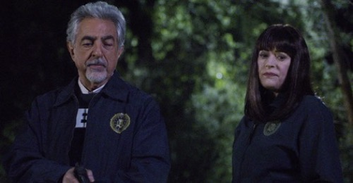 "Criminal Minds Recap 02/12/20: Season 15 Episode 8 ""Family Tree"""