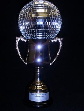 Who Won DWTS Season 10 - The Finale Recap!