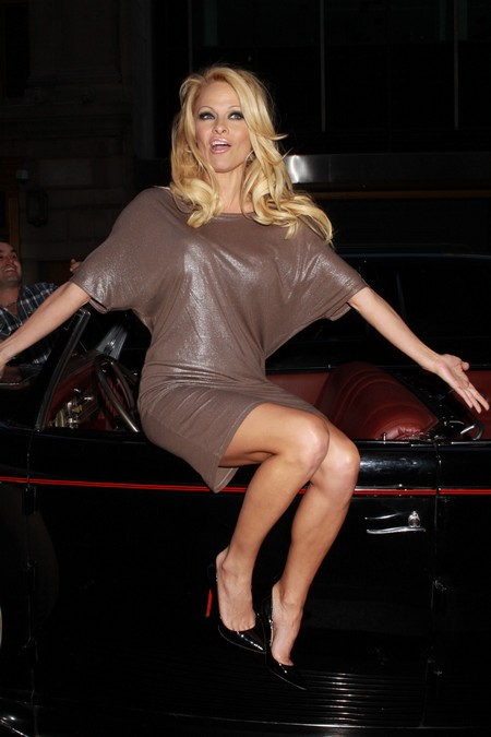 Another Lap Dance For Pam Anderson The Hockey Fan (Video)