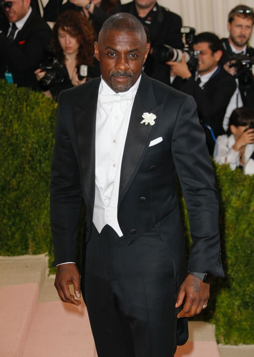 Madonna and Idris Elba Romance: Couple Hooked Up At Halloween Party?