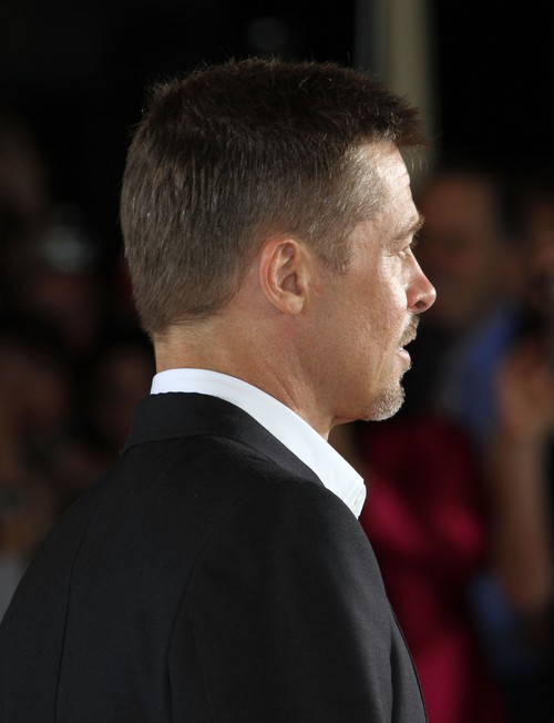 Brad Pitt Casually Dating - Moving On From Angelina Jolie