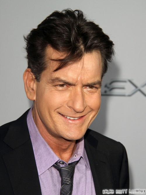 Charlie Sheen Wants Denise Richards To Marry Him Again