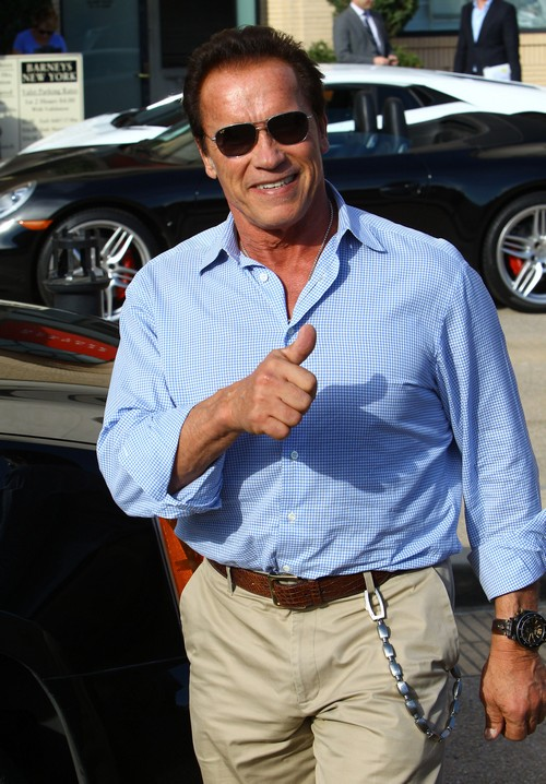 Arnold Schwarzenegger's Divorce Settlement: The High Cost of Cheating Exposed