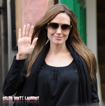 Angelina Jolie Ripped Off Plot For Her New Movie