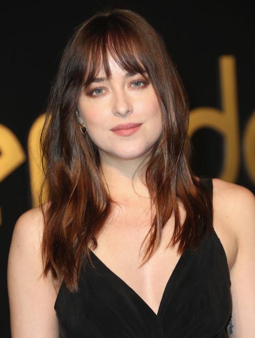 Fifty Shades Freed Spoilers: Jamie Dornan and Dakota Johnson Take Dark Turn in Teaser Trailer