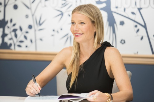 Gwyneth Paltrow Is Not Over The Hate She Gets For Her Goop Brand