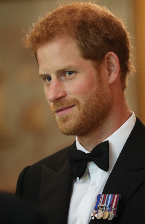 Prince Harry Does Damage Control Over Princess Diana Coffin Remarks: Flip-Flops on Comments