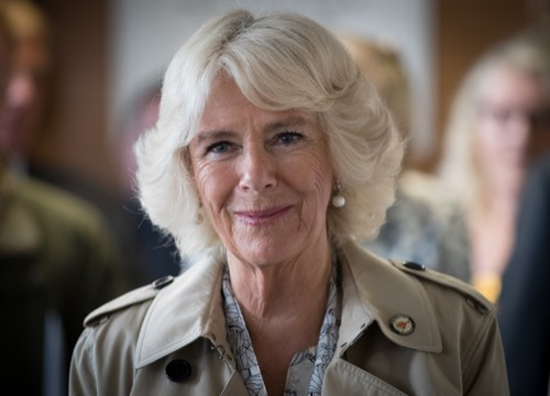 Camilla Parker-Bowles Sees New Royal Ally in Meghan Markle: Two Outsiders?