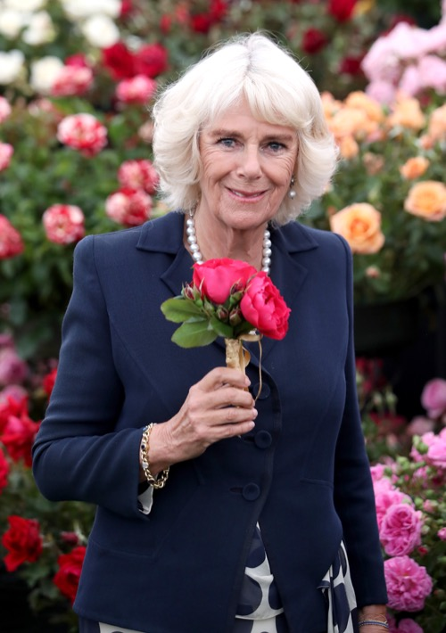 Prince Charles and Camilla Parker-Bowles' Low Popularity Destroying the British Monarchy
