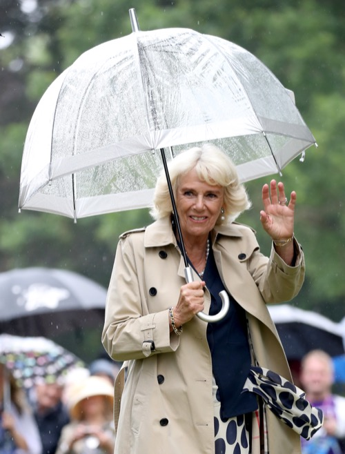 Camilla Parker-Bowles In Hiding As Princess Diana's 20th Death Anniversary Looms